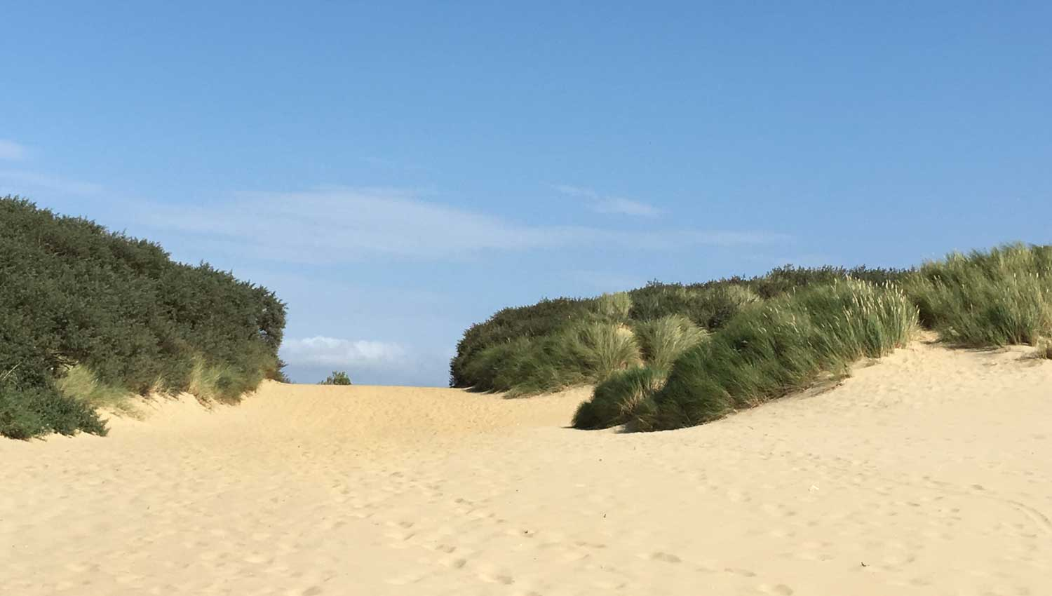 Owlers Retreat Camber Sands Holiday Cottage - Slider - Beautiful Sand Dunes